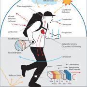 em-thermoregulation